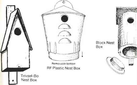 Flycatcher Nest Box Plans