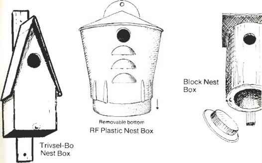 Trivsebo Nest Boxes Nest Boxes Bird Watching Blog